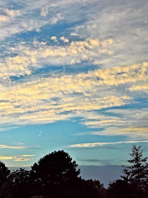 gamta,dusk,saulėlydis,dangus,laisvas wolkenformation,apšviesta saule,tamsaus medžio viršūnės,glazūruotas apima,gražus