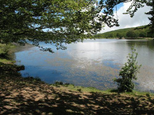 nature park lake