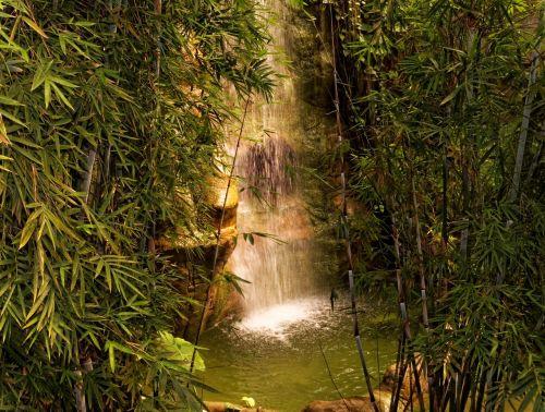 nature waterfall small waterfall