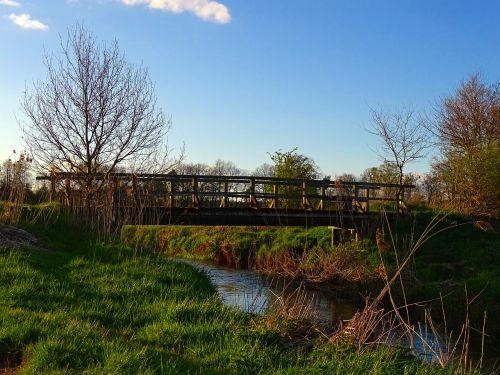 nature bridge brook bach
