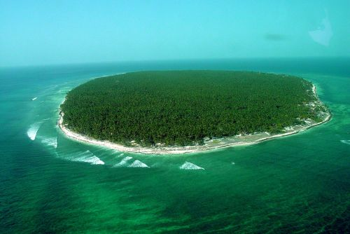 nature greenery island