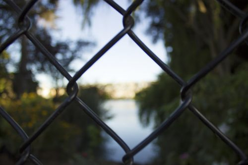 nature fence exterior
