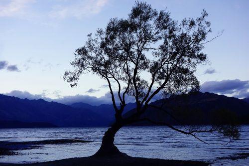 gamta,Naujoji Zelandija,Wanaka