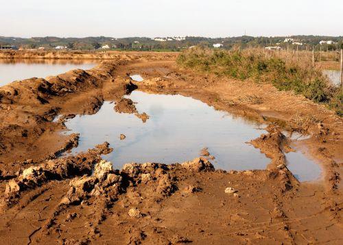 nature mud path