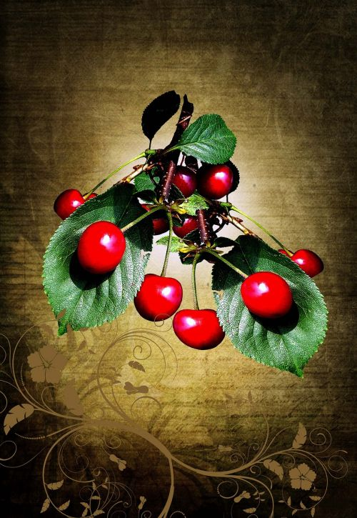 nature fruit fruits