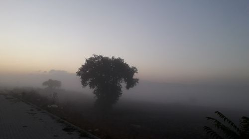 nature dawn bicycle rides