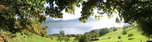 nature weggis lake lucerne region