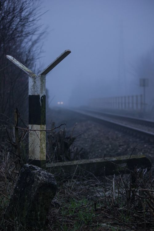 nature train railroad