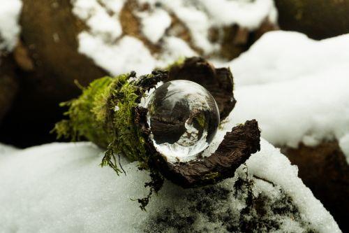 nature snow winter