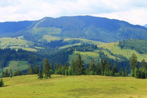 nature carpathians mountain landscape