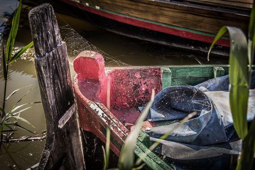 nature wood barca