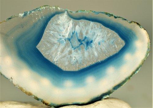 nature  shell  desktop