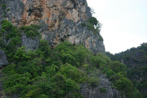 nature thailand mountains