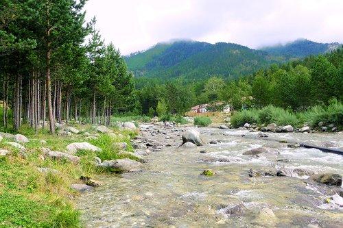 nature  altai  mountain altai