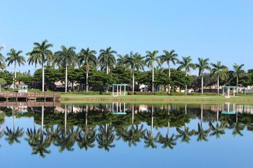 nature  palmas  lake