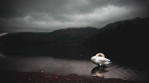 nature  lake district  lake