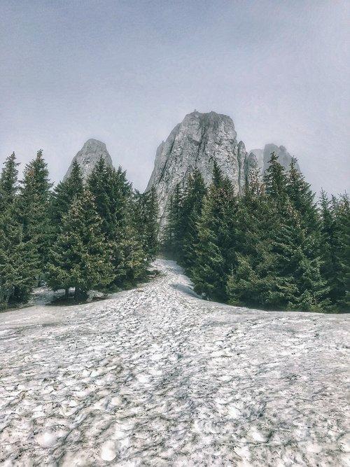 nature  winter  wonder