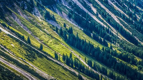 nature  mountains  forest