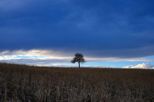 nature  landscape  mood