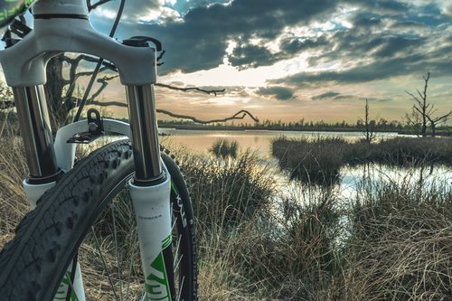 nature  mountainbike  wheel