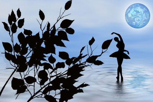 nature  dancing in the water  silhouette