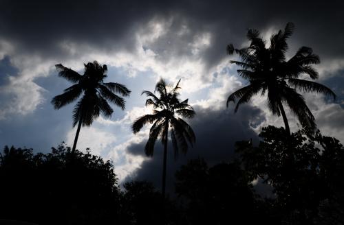 gamta,griauna,dangus,pilkas dangus,audringas dangus,palmės,turizmas,kelionė,saulė už debesies,žiaurus dangus,palmių siluetas