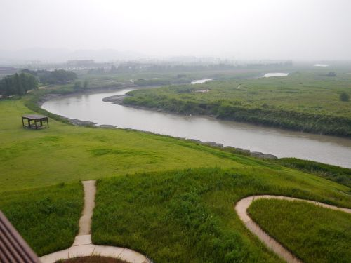 nature,river,greenness,landscape