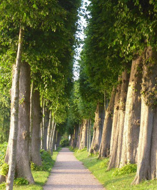 nature avenue glücksburg