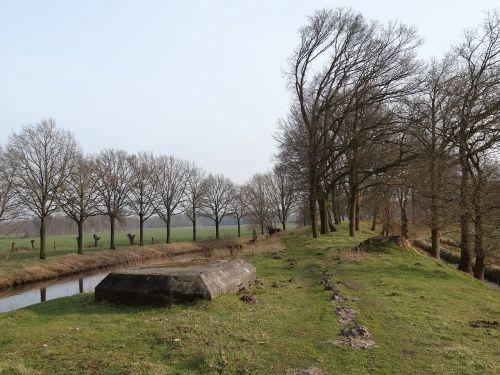 nature landscape netherlands