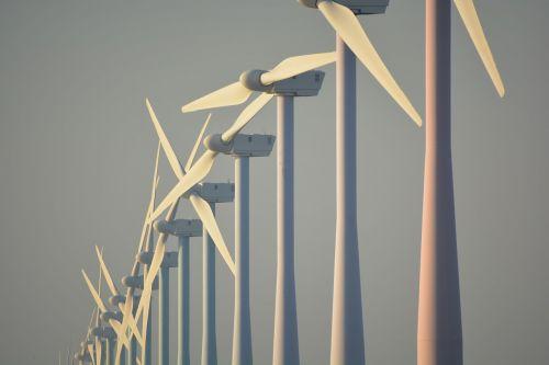 nature windmills netherlands