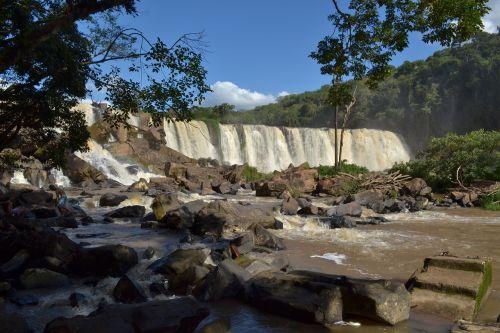 nature water jump
