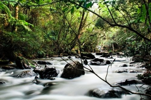 nature rapids rio