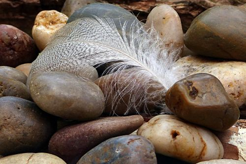 nature cairn feather