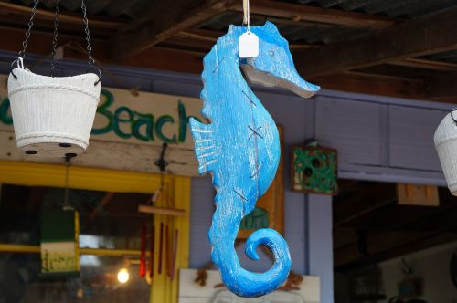 nautical decor sea horse ocean