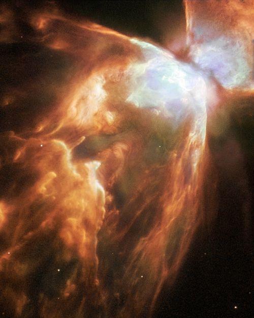nebula planetary bug