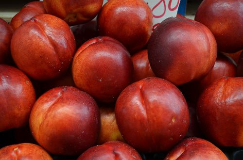 nectarines red fruit fruit stall