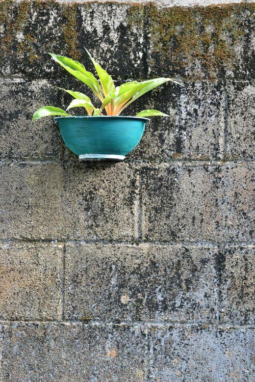 negative space flower pot hand made pot