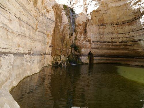 negev israel desert
