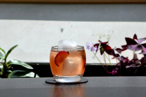 negroni cocktail mixology