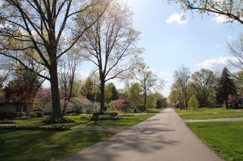 neighborhood spring yard