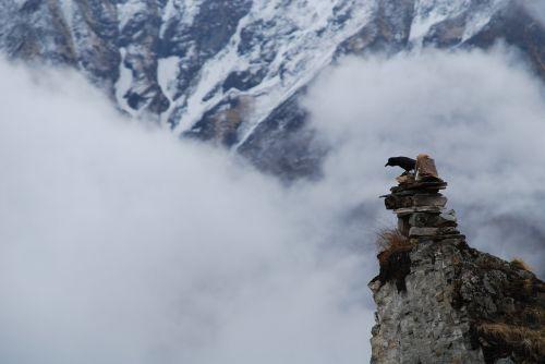nepal bird cairn