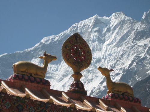 nepal himalayas buddhism