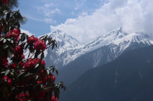 nepal trekking nepal trekking