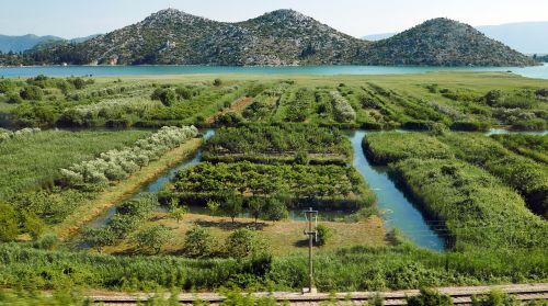 neretva estuary irrigation management