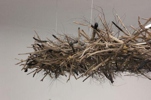 nest twig wood