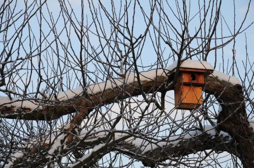 nesting box winter hatchery