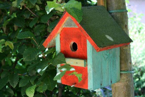 nesting box aviary spring