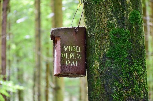 nesting box forest tree