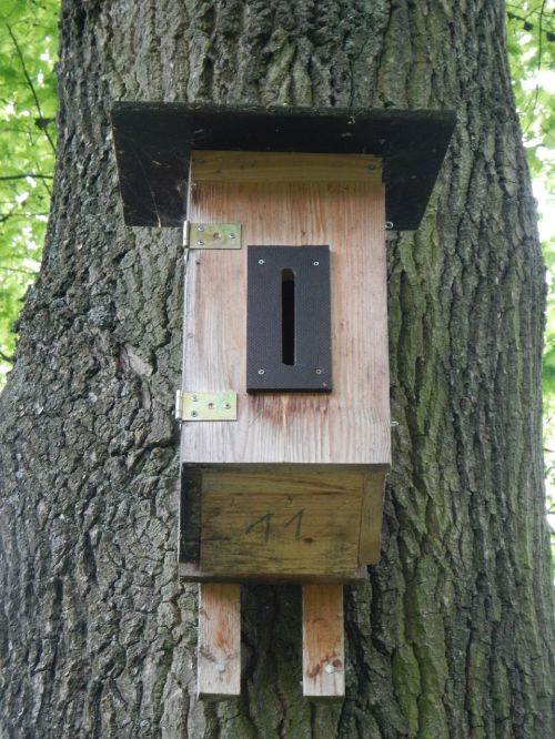 nesting box aviary bird feeder