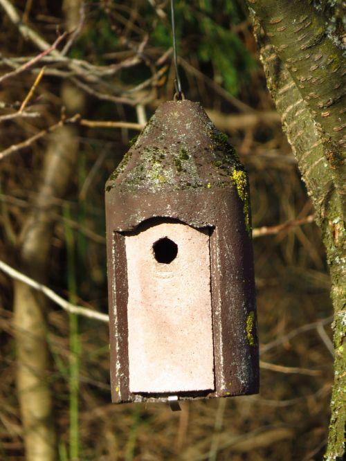 nesting box aviary incubator
